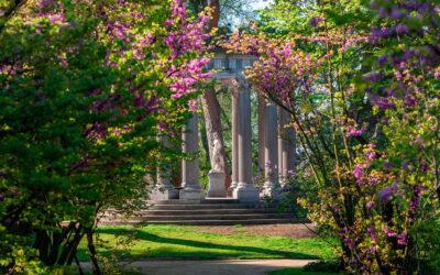 Jardines con encanto en Madrid para celebrar una ceremonia.